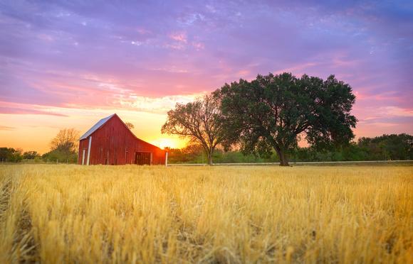 Webquest The Kansas Nebraska Act